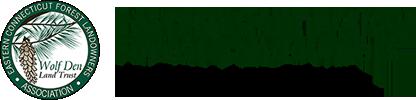 ECFLA | WDLT Logo